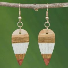 Wood dangle earrings, 'Woodland Leaves' - Striped from Brazil Leaf Jewelry, Fall Jewelry, Wood Earrings, Dangle Earrings, Old Coins, Jewelry Packaging, Gifts For Wife, Woodland, Dangles