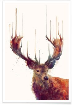 Red Deer als Premium Poster von Amy Hamilton | JUNIQE