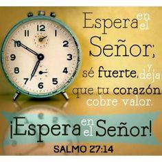 << Espera en el Señor; se fuerte y deja que tu corazón cobre valor, ¡Espera en el Señor! >> Salmos 27:14