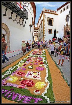 Corpus Christi, Carpets of flowers, Sitges, Barcelona, Spain, Racó de la Calma