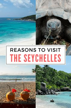 Reasons to visit the Seychelles #beachtraveldestinations