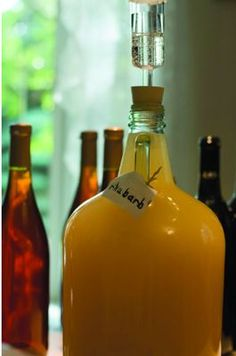 hillbilly wine with fruit and yeast