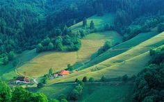 Tips and Recommendations for travel in The Black Forest, Germany.