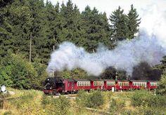Europa+Deutschland+Sachsen-Anhalt+Eisenbahn+historisch+Lokomotive+Dampflok+fahrend+Rauch+Wald+Zug+Waggon+Personenzug