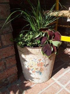 Vintage metal waste basket as planter