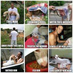 A true hero<3