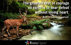 The greatest test of courage on earth is to bear defeat without losing heart. - Robert Green Ingersoll - BrainyQuote