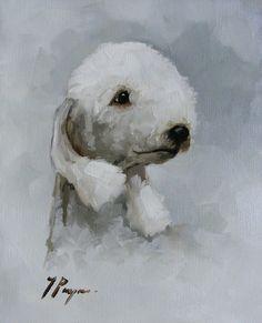 Bedlington terrier portrait - precious