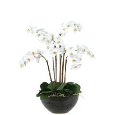 faux white orchid floral arrangement - in glass bowl on center of kitchen island