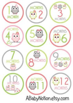 Pink & lime owls - 011 - Circle owl monthly iron on or sticker decal transfer pink lime green baby girl shower nursery Baby Monthly Milestones, Baby Milestone Cards, Baby Cards, Funny Baby Photography, Baby Girl Patterns, Baby Month Stickers, Baby Journal, Baby Growth, Baby Clip Art