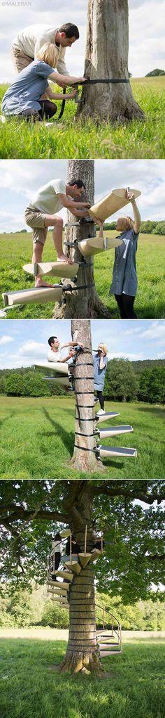How To Climb A Tree Effortlessly and Safely!   Cómo subir a un árbol sin esfuerzo y con seguridad!