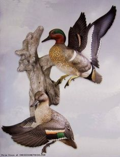 "Busting-Out Green-winged Teal Pair Wall Mount Sculpture by Woodside Gardens. $220.99. 16.5""H x 14""W x 10""D. A tradition of craftsmenship...how each decoy is created.  All Loon Lake Decoy Company Waterfowl Decoys, Upland Bird Sculptures and Framing Cameos start as an original solid Tupelo Gum or Basswood wood carving by Master Carver Sam Nottleman. From each original, a mold is made which the hand-cast reproductions are then pulled.  A variety of casting mediums along with a re..."