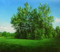 Plane-trees Oil on canvas 24x28in