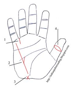Sign Of Inheritance Palmistry | INDIAN PALM READING - HASTREKHA VIGYAN