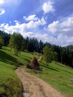 mountain road by kosova cajun, via Flickr