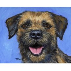 Border Terrier Dog Art Print of Original Painting by Dottie Dracos, on Blue Background