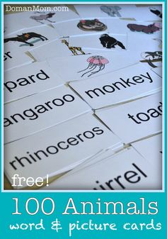 This is a set of animal reading word and picture flash cards that I made for Damien a while back. It includes 100 animals (with corresponding picture on the back of each card), as well as about 6 e. Reading Words, Kids Reading, Card Reading, Baby Flash Cards, Flashcards For Toddlers, Glenn Doman, Teaching Child To Read, Letter Flashcards, Learning Websites
