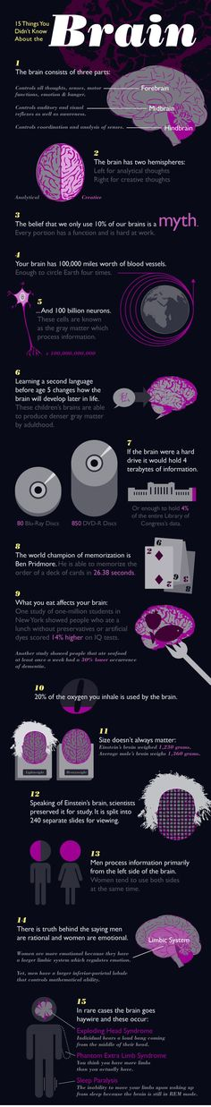 15 things you don't know about the brain