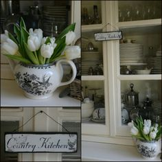 A hint of Spring at home....  www.facebook.com/TheReedWarbler