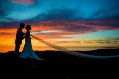 Stephanie Secrest is an amazing photographer- lifelong memories for sure! Wedding Pictures, Wedding Ideas, Sunset Wedding, Amazing, Awesome, Memories, Artist, Photography, Products