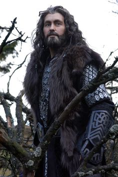 "Thorin Oakenshield cosplay. WOW!!! I'd freak out if I saw this guy at a comic con...by then my Kili cosplay would be complete and I'd scream ""Uncle Thorin!!!!"" And hug him"
