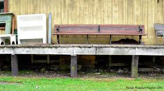 Renee Taylor's Photography: Hester Store and The Depot, Warren Plains, Warren County NC