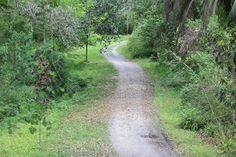 Ravine Gardens State Park, Palatka,Florida