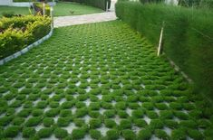 With permeable pavers, you can create the design of your dreams. Permeable paving is an eco-friendly option for your design needs.