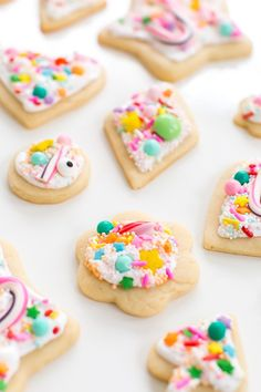 everything sweet sugar cookies aka pinterest failproof a blog cookie exchange holiday desserts