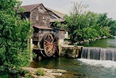 The Old Mill - Yummy food that the whole family will love!