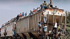 La Bestia aumentará su velocidad para evitar inmigrantes   México, ferrocarril