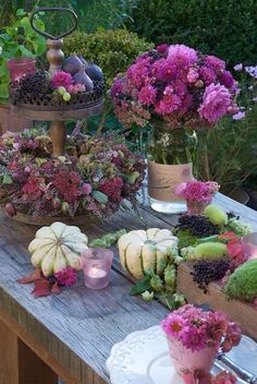 Purple-inspired Autumn decor, add a purple cabbage plant or two