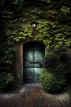 Magical entrance