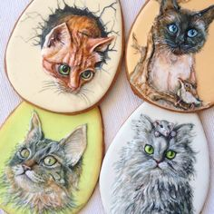 biscotti gatti - kitten cookies