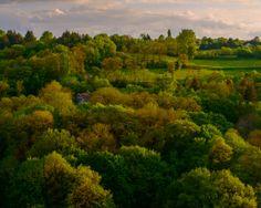 Foliage by Lari Huttunen on Love Affair, Vineyard, Scenery, River, Explore, Nature, Landscapes, Outdoor, Paisajes