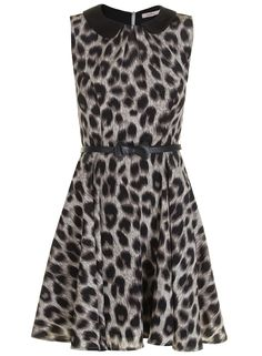 Vestido estilo retro con estampado de leopardo en gris y cuello bebe. Incluye cinturon de piel con lazo