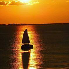 Just a sailboat cruising off into the sunset. #fortmyersbeach #swfl #ftmyers #islandlife #sailing #boats #travel #justgo