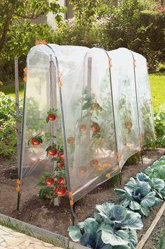 Vegetable garden: the work of spring - garden landscaping Potager Bio, Hydroponic Farming, Greenhouse Gardening, Gardening Tips, Mini Greenhouse, Organic Gardening, Vegetable Garden Design, Garden Trellis, Raised Garden Beds