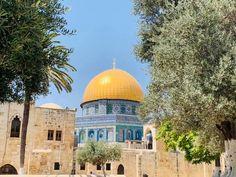 Una prima giornata a zonzo per i vicoli della città vecchia visitando i suoi luoghi iconici Taj Mahal, Travel, Palestine, Viajes, Traveling, Trips, Tourism