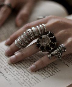 l'anello con la conchiglia