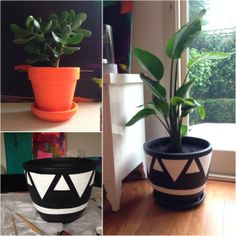 Plastic Plant Pots, Plastic Flower Pots, Painting Plastic, Diy Painting, Painting Kitchen Cabinets White, Painted Plant Pots, Home Organisation, Decorative Planters, Rental Decorating
