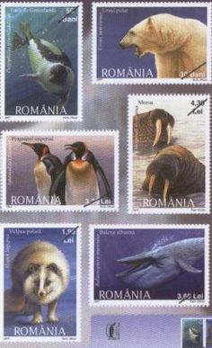 Filatelia: Fauna polar en Rumanía