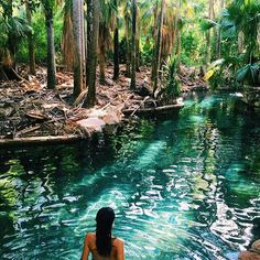 Photo by Mataranka Hot Springs, Australia. Photo by Hot Springs Arkansas, Far Away, British Columbia, Landscape Paintings, Alaska, Beautiful Places, Places To Visit, To Go, Adventure