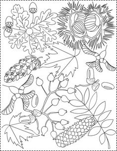 Fall Coloring Pages Adults Lovely Nicole S Free Coloring Pages Autumn Coloring Pages Coloring Pages Nature, Garden Coloring Pages, Mandala Coloring Pages, Leaf Coloring, Coloring For Kids, Adult Coloring Pages, Free Coloring, Coloring Books, Autumn Painting