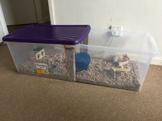 59 x 39 x 30 inches Hamster Cages For Sale, Large Hamster Cages, Hamster Bin Cage, Robo Hamster, Diy Guinea Pig Cage, Hamster Habitat, Hamster Care, Hamster Toys, Ideas