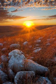 ✯ Golden Rays Over Konza Prairie, Kansas