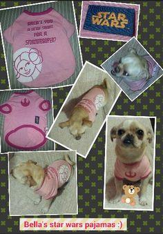 Lol omg this too much lol. /  jajajaja Dios mio esto es demasiado jajajajaja #puppies