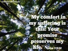 spiritual encouragement for those suffering from mental or chronic illness