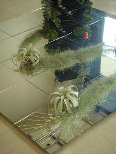 舗装した大地を割っても生命を維持する  自然植物の強さを表現 My Works, Ladder Decor, Christmas Wreaths, Gift Wrapping, Holiday Decor, Glass, Home Decor, Christmas Swags, Paper Wrapping