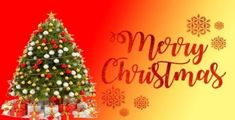 Get beautiful Merry Christmas 2019 Images Wishes Quotes Pictures Greetings Photos Merry Christmas Images Merry Christmas 2019 Wishes Messages HD Wallpapers